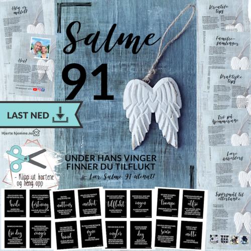 SALME 91, digital